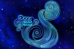Vízöntő és a 12 csillagjegy