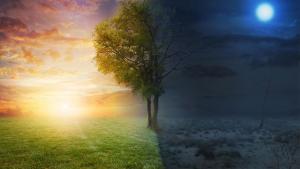 Megújulás a tavaszi napéjegyenlőség erejével!